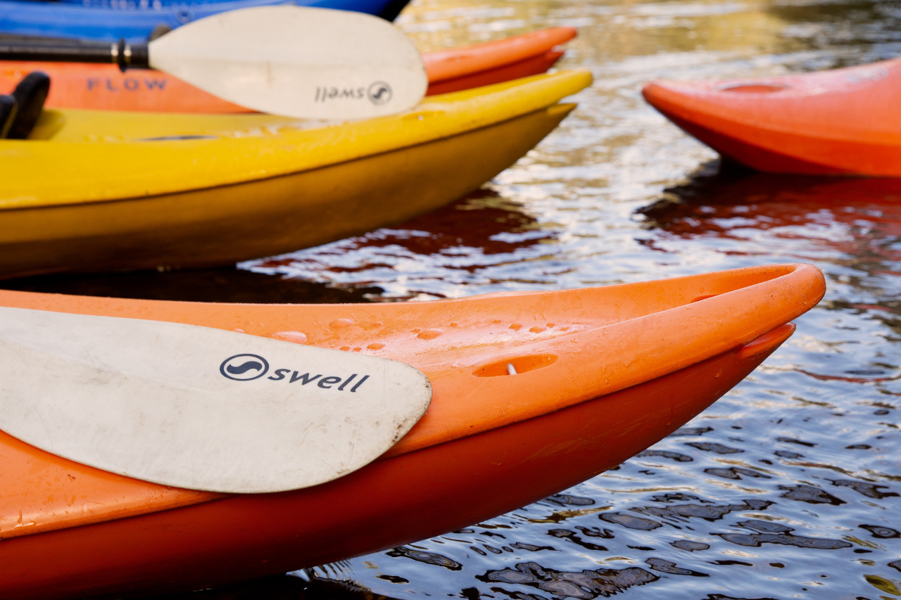 Kayak Hire Gallery Image